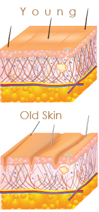 young-old-skin