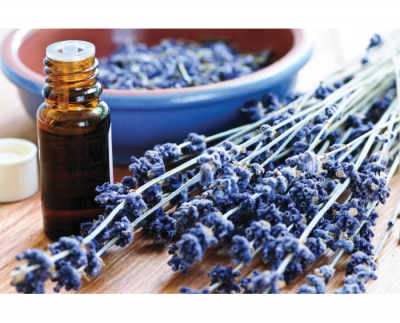 Treating Skin Conditions Through Essential Oils