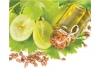 The Truth About Grapeseed Oil