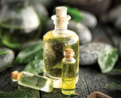 The Natural Wonders of Tea Tree Oil