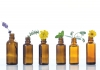 The Nature of Aromatherapy