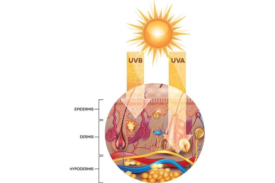 Solar Science: Explaining the Difference Between UVA and UVB Rays to Clients