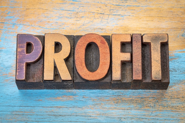 Profit is Not Profanity