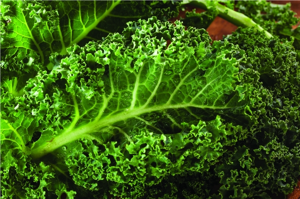 Kale Yeah! A Must-Have Ingredient for Wellness and Skin Health