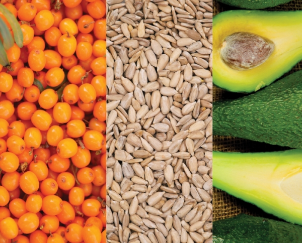 Synergistic Benefits of Vitamin E