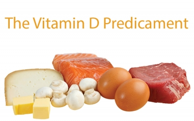 The Vitamin D Predicament