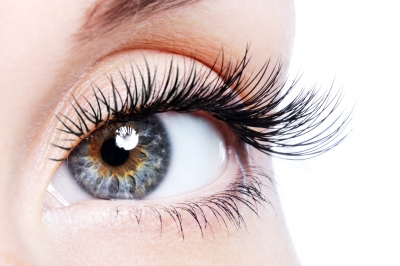 Eyelash Extensions: Enhance Your Spa's Income with the Wow Factor!
