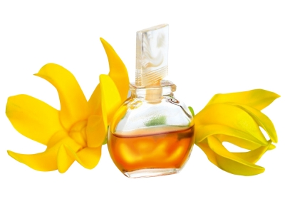 TOP 6 OILS TO USE IN SKIN CARE: PART 5