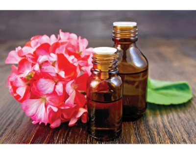 Top 6 Oils  to Use in Skin Care: Part 3