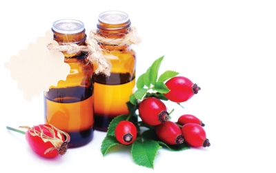 5 Benefits of Rosehip Oil