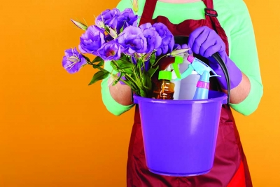 Dos and Don'ts: SPRING  CLEANING