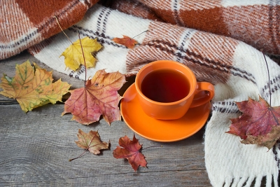 Cozy and Crisp: Quick Tips for a Fall-Ready Spa